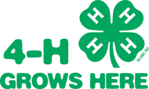Cover photo for What is 4-H County Council?