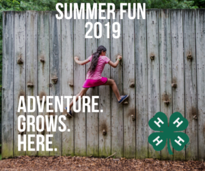 Cover photo for Pitt County 4-H Summer Fun 2019