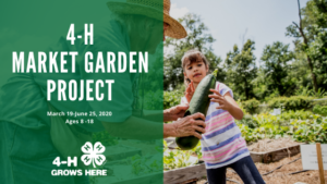 Cover photo for Pitt County 4-H Market Garden Project