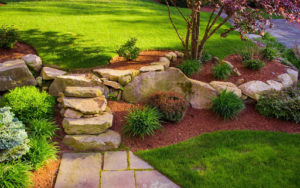 Cover photo for Landscape Contractor Exam Review Series