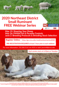 Cover photo for Small Ruminant Webinar Follow-Up Series