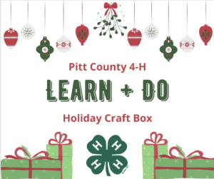 Cover photo for Pitt County 4-H Learn+Do: Holiday Craft Box