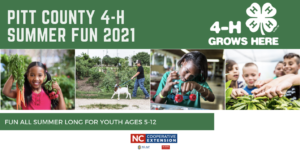 Cover photo for Pitt County 4-H Summer Fun 2021